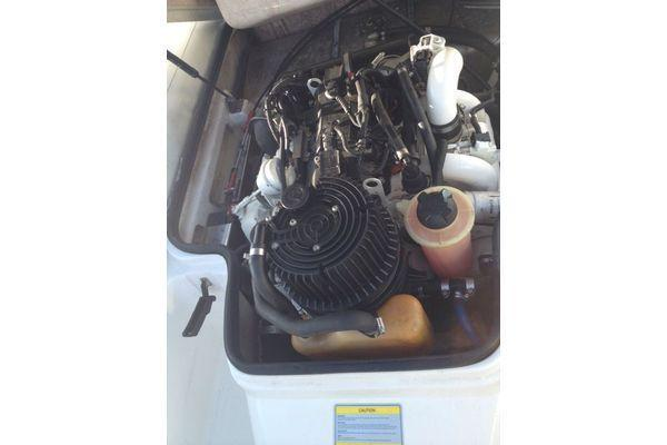 William - 325 Turbo Rib